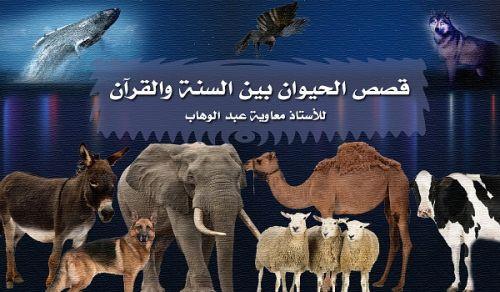 قصص الحيوان بين السنة والقرآن -معاوية- 10