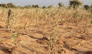تونس العاصمة بدون ماء لخمسة أيام: هل بدأ الإعداد لخصخصة شركة المياه؟