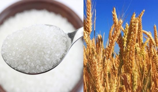 Sugar and Wheat Crisis Investigation Reports Confirm that Capitalist Democracy is the Destructive Virus, that must be Completely Locked Down, so it Dies its Own Death