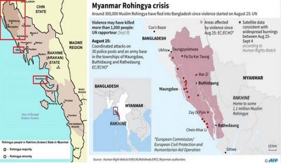 The Rohingya Crisis: History and Politics