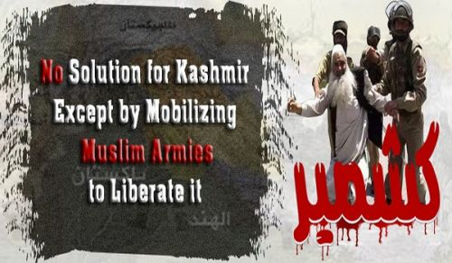 Central Media Office: Campaign, No Solution for Kashmir Except by Mobilizing Muslim Armies to Liberate it