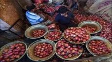 India's Onion Export Ban has unmasked the True Nature of the Secular Rulers of Bangladesh who feel no Shame to act like Mouthpieces of the Enemy Mushriks