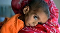 The Hunger Crisis in Afghanistan: A New World Order's Scandal