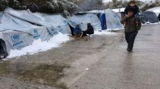 مصیبتهای فاجعهآمیز حتی در عدم طوفان برف!